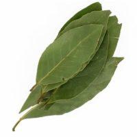 Laurier feuilles